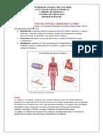 Componentes de sistema cardiocirculatorio