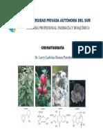 13 cromatografia2018.pdf