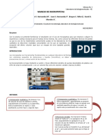 Micropipetas Informe Lab