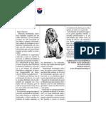 Cartas al director para trabajar.pdf