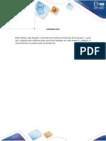 Formato Informe Individual Programacion
