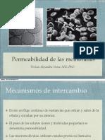 4. Permeabilidad de Las Membranas
