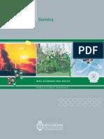 quimica1.pdf