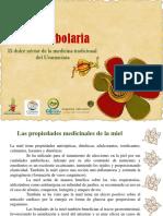 Manual de Usos Para Miel y Herbolaria