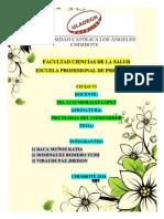 MAPA_CONSUMIDOR.pdf