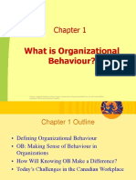 Chapter 1-What is Organizational Behaviour.ppt