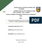 Trabajo Monografico de Agustin