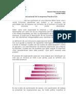 ESTRUCUTURA ORGANIZACIONAL.pdf