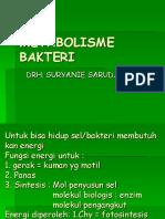 metabolisme bakteri