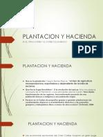 Plantacion y Hacienda Pp (2)