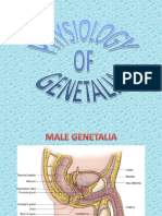 Genetalia Physiology