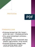 5. PROTOZOA.pptx