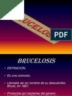 Bruce Los Is