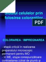 Coloratii - 2015 (cu poze).ppt