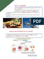 LA-NUTRICIÓN.pdf
