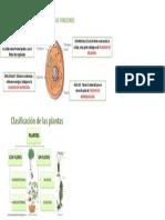 PARTES-DE-LA-CÉLULA-Y-SUS-FUNCIONES.pdf