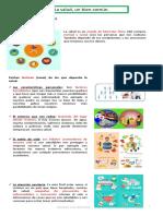 TEMA-4-La-salud-un-bien-común.pdf
