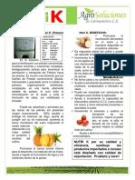 Potasio Fertilizante - Nutri k - AgroSolucionesLA