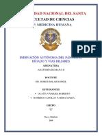Inervación autónoma.pdf