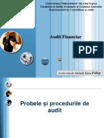 Probe si proceduri de audit