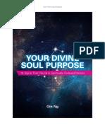 tmp_11865-Your_Divine_Soul_Purpose_GinNg2042416510.pdf
