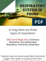 Frog Organ System