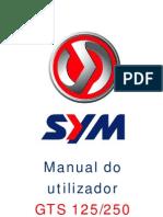Manual Utilizador GTS125 250 300