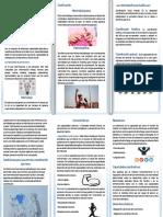 Transversal Brochure Interactivo Con Planteamiento de Coordinacion Motriz Fina y Gruesa Docx