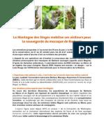 Semaine de la conservation des magots à la montagne des singes
