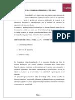 Plan Estrategico Allpa Consulting