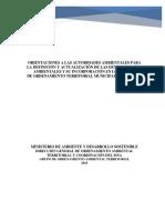Orientaciones_para_la_definicion_y_actualiza_de_las__Det_Amb.pdf