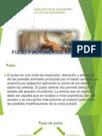 Pulso y Mov. Ruminales