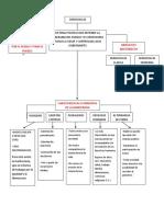 ESCENARIO 5 DEMOCRACIA.docx