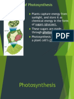 Photosynthesis [Autosaved].ppt