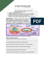 Guía de Trabajo Ciencias Naturales Ciclo 4 Sábado