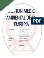 Gestion Medio Ambiental Final