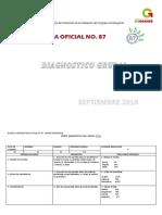 DIAGNÓSTICO GRUPAL 2016.docx