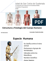 sistemascuerpohumano-130730192233-phpapp01
