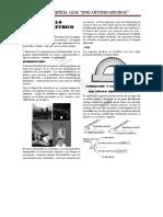 ANGULO TRIGONOMETRICO2.docx