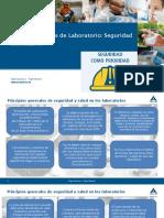 PPT - Normas Generales de Seguridad en Laboratorios