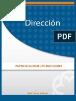 -Direccion (1).pdf