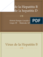 Virus de La Hepatitis B y D