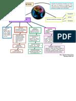Mapa Mental  procesos cognitivos.