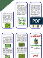 TRIPTICO PLANTAS HEPATICAS