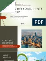 El Medio Ambiente en La Ciudad