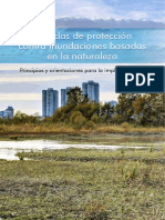 Brochure Implementing Nature Based Flood Protection ESP