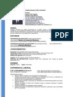 CV.-Andres-Niño-A..pdf
