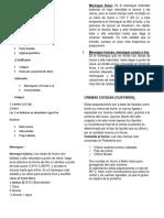 275784635-teoria-del-Mouse.docx