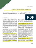 Principios Basicos De Ultrasonografia Veterinaria