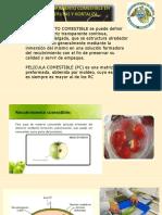 frutas y hortalzas